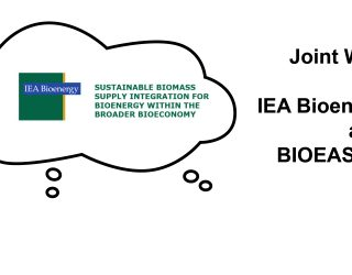 Joint IEA Bioenergy Task43 and BIOEAST Initiative Workshop