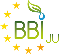 BBI JU info day in several BIOEAST countries