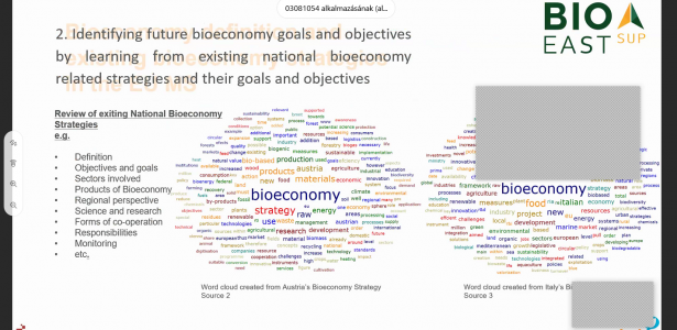 "Eleven national BIOEASTsUP project virtual round tables ""Indicators and statistical evidence for bioeconomy development"" took place in October 2020"