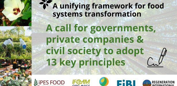 BIOEAST also signed the IPES-Food Sustainable Food Systems Call to action – 13 principles of food system transformation